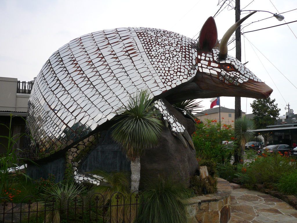 armadillo-goode-co